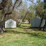 Canvas Cabin Tents: #7, #8