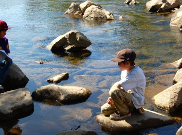 A student watches the river for new ecosystems.