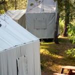 Canvas Cabin Tents: C, E, D