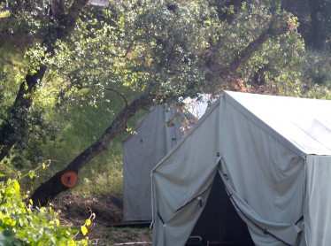 Canvas Cabin Tents: F (G in background)
