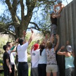Low Ropes: Up and Over Element