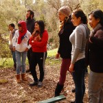 Life Skills Development Program: Bridges Out Element