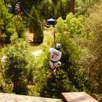 High Ropes: Zip Line