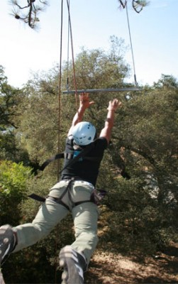 leaping toward the trapeze